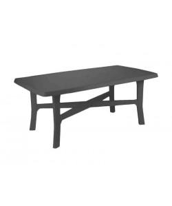 Table Senna Anthracite 180x100cm résine de synthèse